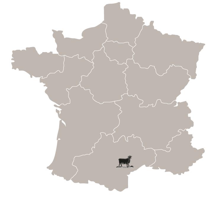 vin languedoc - vin minervois - sud de france
